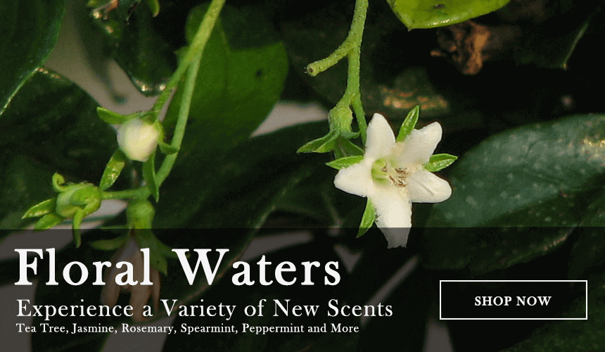 Floral Waters - Tea Tree, Jasmine, Rosemary and more
